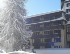 Rezidence Des Alpes 2  - Madonna di Campiglio FREE SKI